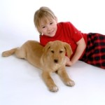 Child with puppy on seamless white background Brookside lawn service